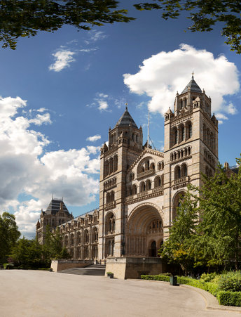 Natural History Museum, via VisitBritain Images